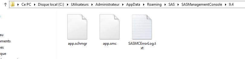 fichier_debug_sas