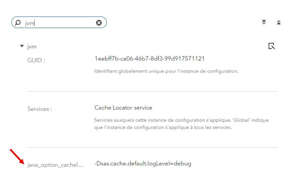passer-le-cache-locator-et-le-cache-server-en-mode-DEBUG-7