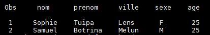 proc print data=monExport;run;